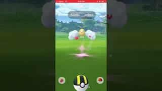 New shiny generation three Pokémon Swablu in Pokémon go