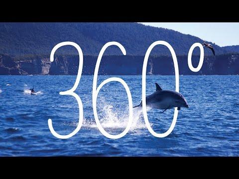 360: Fortescue Bay, Tasmania, Australia