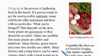 Intermediate Learning English Lesson 3 - What are you eating? - Vocabulary and Pronunciation