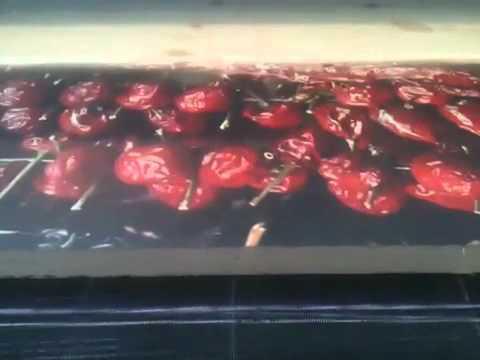 Photo realistic Printing on wood