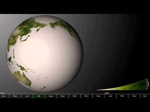 Green: Vegetation on Our Planet