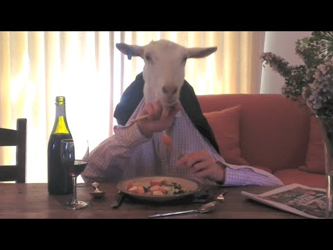Baixar Goat Having Dinner