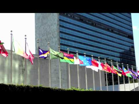 ICMUN - What is MUN ?