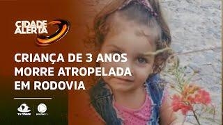 Criança de 3 anos morre atropelada em rodovia