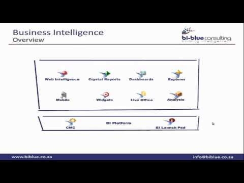 SAP BusinessObjects Business Intelligence Suite Introduction