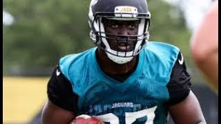 leonard-fournette-mix-no-flockin-jaguars-hype.jpg