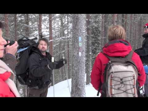 Rondreis Finland | Sawadee Reizen