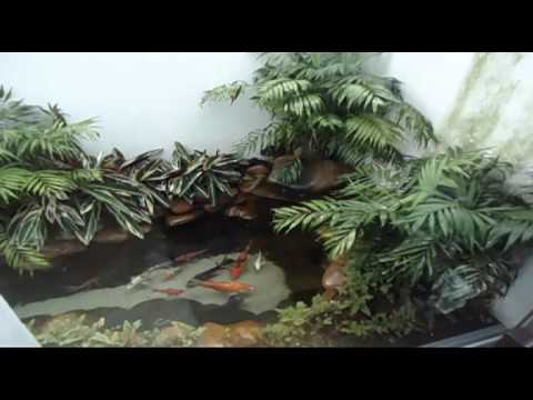 Video lago ornamental 4m2 cl max ambiental for Como hacer un lago artificial