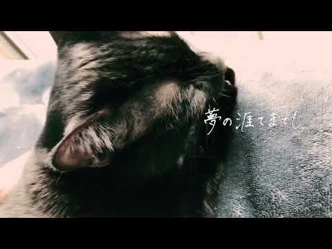 Ayaka Tachibana - 夢の涯てまでも(Piano ver.)【MV】