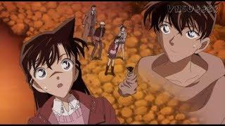 Sự thật về việc Shinichi mất trí nhớ