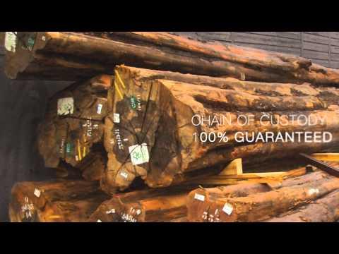 La Différence Warwick  - Bois certifié FSC