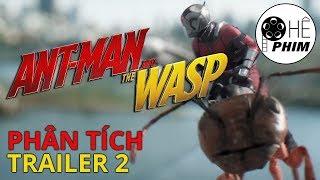 ANT-MAN & THE WASP - Phân tích Trailer 2 & Dự đoán