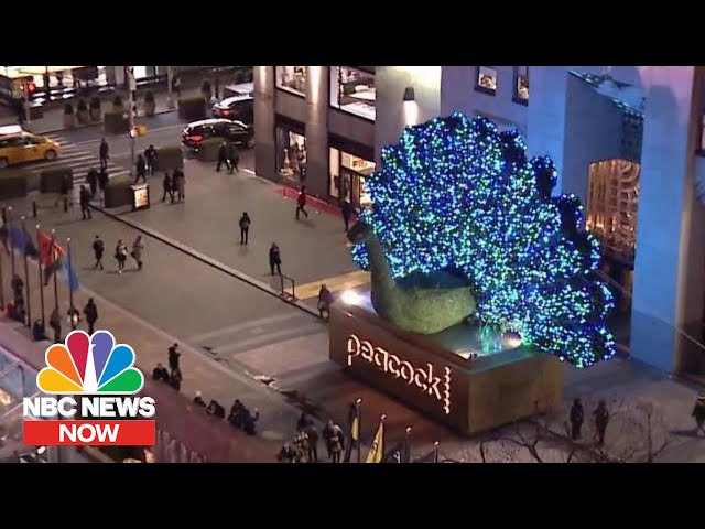 NBCUniversal Reveals New Streaming Platform 'Peacock' | NBC News NOW