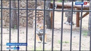 К осени Большереченский зоопарк ждёт большое обновление