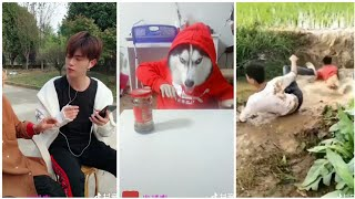 ●Xem là cười # 15 tiktok Trung Quốc /funny video tiktok china
