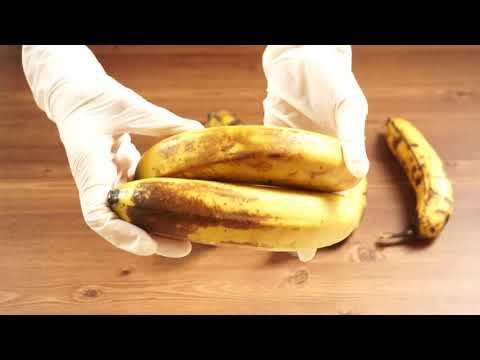 바나나 오래 보관하는 방법! 냉동하지 않고 10일도 거뜬^^(香蕉,banana)