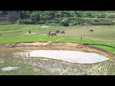 Farmin Operations in Rural Vietnam