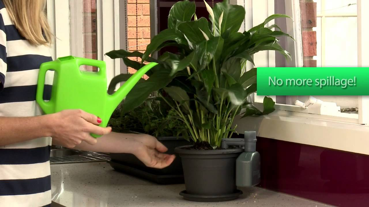 Moisture Matic Automatic Pot Plant Watering System