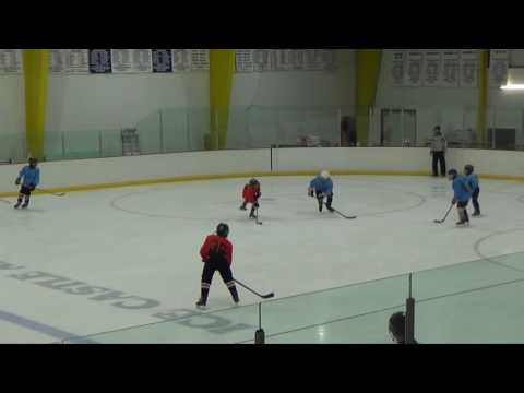Week 8 Letang Highlights: 2016 Quest Hockey 4 on 4 Summer League