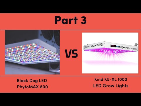 Black Dog LED PhytoMAX 800 vs. Kind K5-XL1000 LED Grow Lights - Part 3