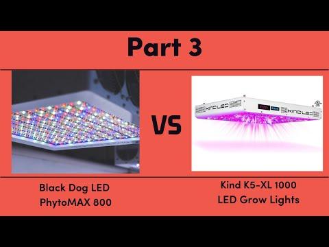 Black Dog LED PhytoMAX 800 vs. Kind K5-XL1000 LED Grow Lights - Part 3