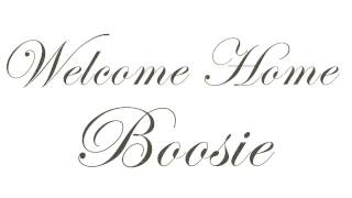 plies-welcome-home-boosie-audio-mp3