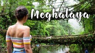 Backpacking In Meghalaya | NorthEast India Trip | Sohra, Living Roots Bridge | Tanya Khanijow