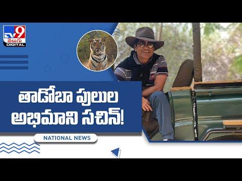 Master blaster Sachin visits Tadoba-Andheri Tiger Reserve