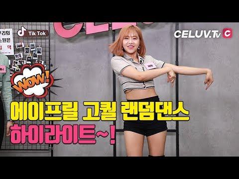[I'm Celuv] 에이프릴(April), 랜덤댄스 하이라이트! (Celuv.TV)