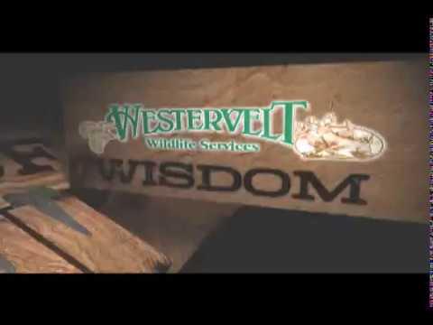 Westervelt Wildlife Wisdom, Annual clovers