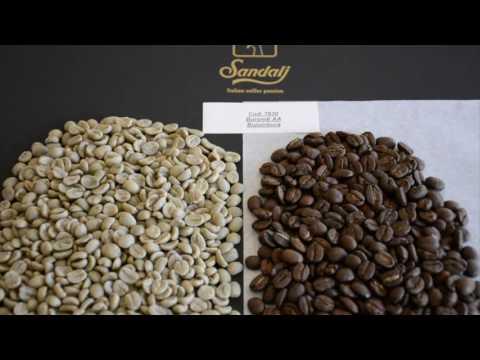 Burundi Washed AA Bujumbura - Sandalj Arabica Coffees