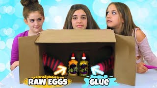 What's In The Box Slime Challenge! * New Version*