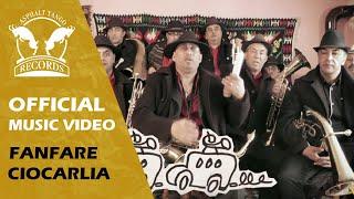 Fanfare Ciocarlia - FANFARE CIOCARLIA GO AMERICA - KICKSTARTER PROJECT