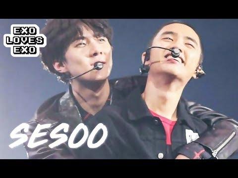 EXO LOVES EXO: SeSoo