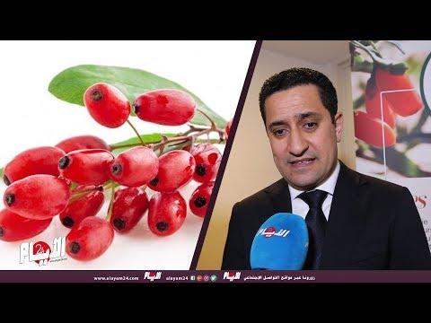 مجموعة الخالص تقدم مشروع إنتاج وتسويق الفاكهة السحرية لأول مرة بالمغرب