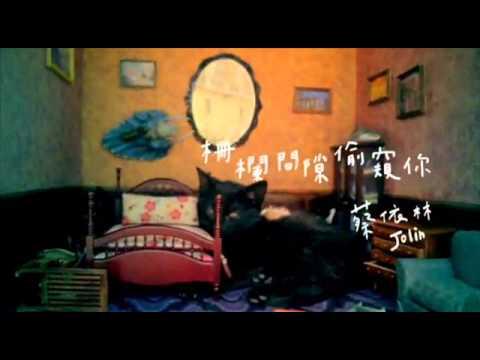 蔡依林 - 柵欄間隙偷窺你 (東彥廷cover)