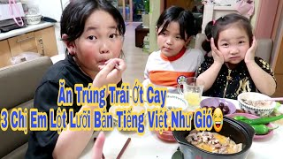 🇰🇷264 || Ba Chị Em Ăn Cơm Canh Thịt Heo Thi Nhau Bắn Tiếng Việt Bá Đạo || Yun Hye Bin
