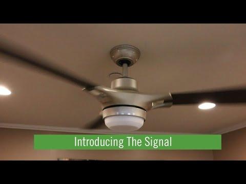 Meet the Signal