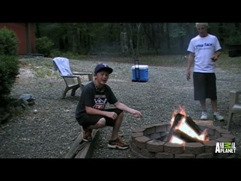 A S'mores How-to Video Turns into Potential Evidence | Finding Bigfoot - Animal Planet  - z53gVw665GA -