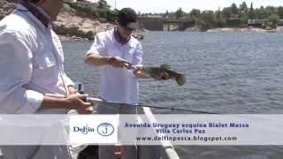 Pesca tarariras con seÑuelos