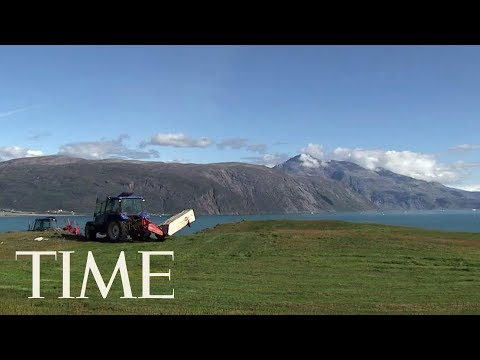 President Trump Considered Buying Greenland For The U.S., Sources Say | TIME