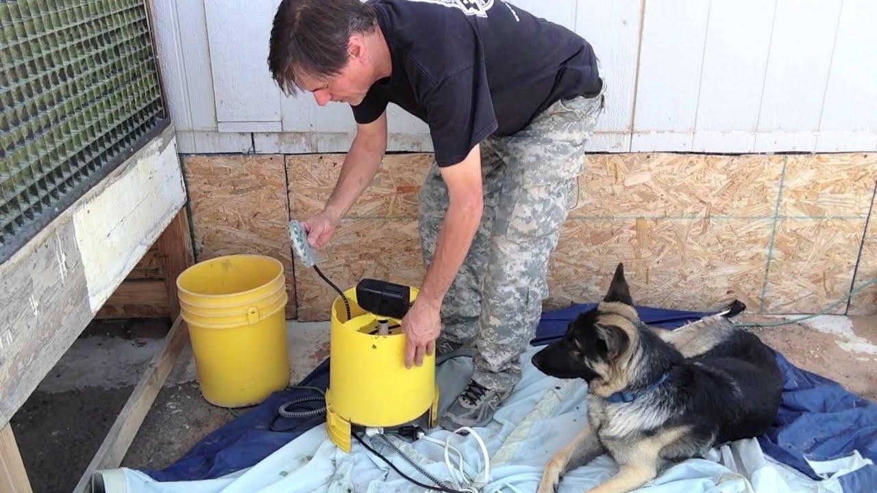 Diy Circulating Dog Water Bowl Youtube