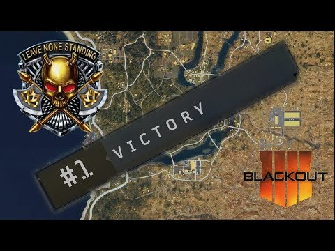 24 Bullets Left! | Duo Win on Blackout | Call of Duty - Black Ops 4