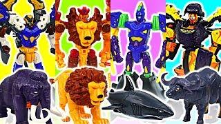 Hello Carbot movie secret of Omphalos island Falo, Klion, A-Shark, dinosaur robots! #DuDuPopTOY