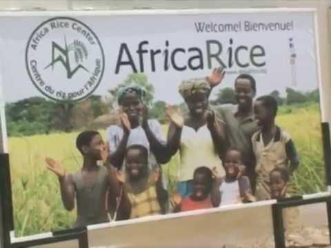 A A Inauguration du siège d' AFRICA RICE par son excellence le ministre Papa Abdoulaye SECK