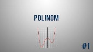 Kaj je polinom? – 1.del