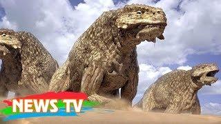 10 động vật thời tiền sử dễ bị nhầm với khủng long