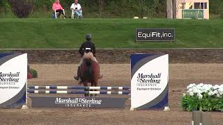 Video of Disguise ridden by Renee Russo from ShowNet!