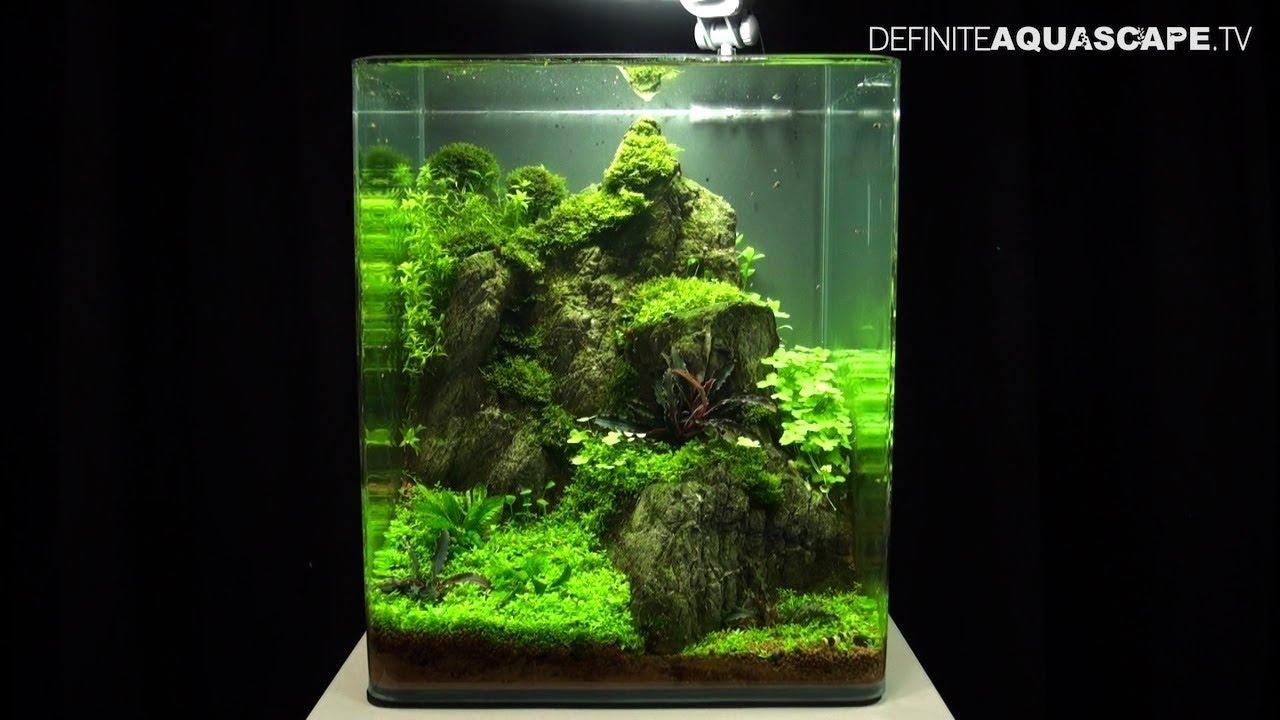 aquascaping the art of the planted aquarium 2013 nano. Black Bedroom Furniture Sets. Home Design Ideas