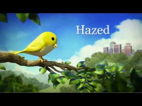 Hazed, un cortometraje impactante sobre la contaminación